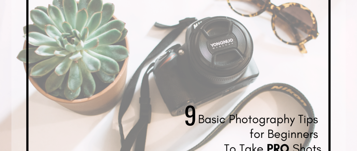 9 Basic Photography Tips for Beginners To Take PRO Shots